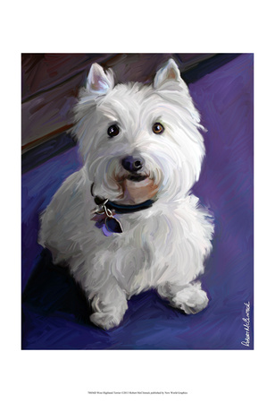 West Highland Terrier Poster by Robert Mcclintock