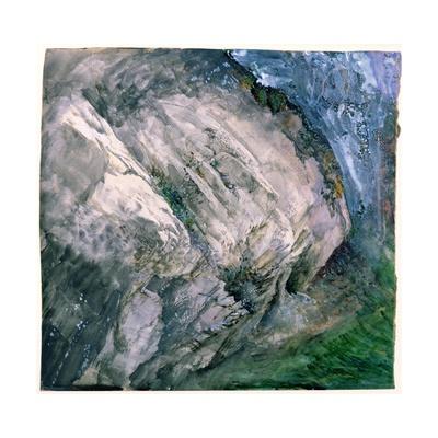 Rocks and Vegetation at Chamouni, 1854 Giclee Print by John Ruskin