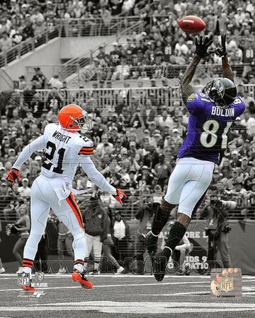 Baltimore Ravens - Anquan Boldin Photo Photo