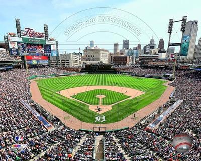 Detroit Tigers Photo Photo