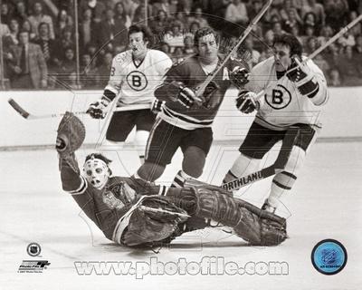 Boston Bruins, Chicago Blackhawks - Phil Esposito, Tony Esposito Photo Photo