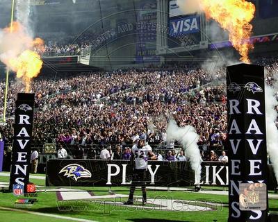 Baltimore Ravens - Ray Lewis Photo Photo