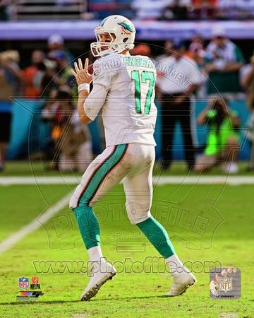 Miami Dolphins – Ryan Tannehill Photo Photo