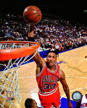Chicago Bulls - Scottie Pippen Photo Photo
