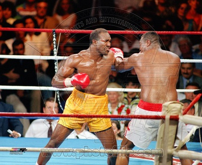 Evander Holyfield boxing photo poster print