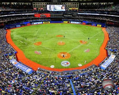 Toronto Blue Jays Photo Photo