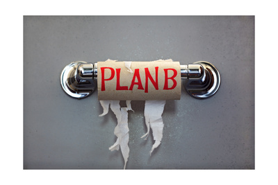 Empty Roll Of Toilet Paper With The Phrase Plan B, Concept For Alternative Planning Prints by  Flynt