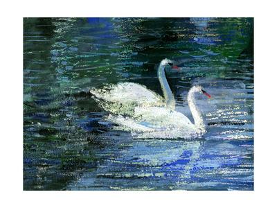 Two White Swans On Lake Prints by  balaikin2009