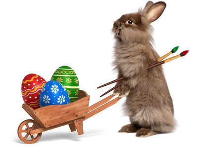 Funny Easter Bunny Rabbit With A Wheelbarrow And Some Easter Eggs Photographic Print by  mdorottya