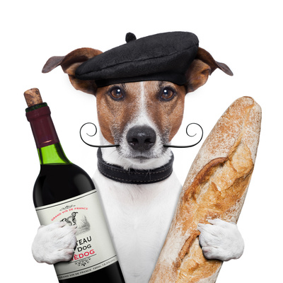French Dog Wine Baguete Beret Stampa fotografica di Javier Brosch