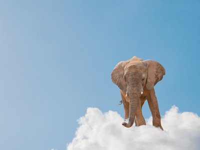 Elephant On Cloud In Sky, Outdoor Photographic Print by Aaron Amat