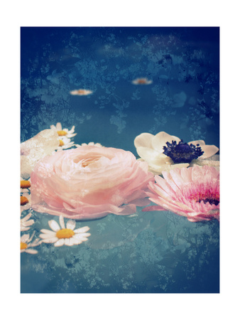 Pink Blossoms In Water Prints by Alaya Gadeh