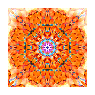 Orange Blossom Mandala Posters by Alaya Gadeh