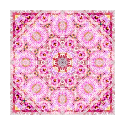 Flower Mandala Love II Print by Alaya Gadeh