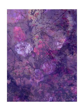 Purple Flower Forest Prints by Alaya Gadeh