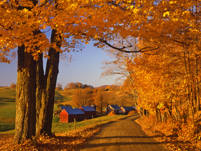 Scenic of Road and Jenne Farm, South Woodstock, Vermont, USA Photographic Print by  Jaynes Gallery