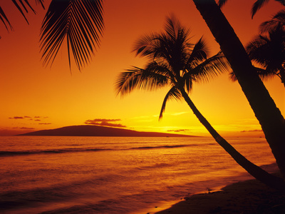 Hawaiian Tropical Sunset on the Island of Maui Hawaii USA photo