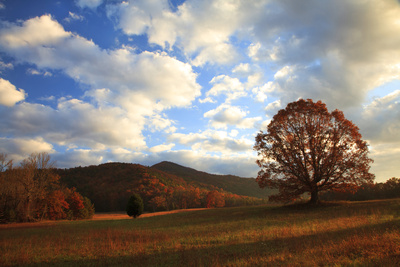 Sunrise in the Fall, Cades Cove, Smoky Mountains NP, Tennessee, USA Photographic Print by Joanne Wells