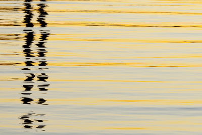 Abstract Reflections in San Diego Harbort, San Diego, California, USA Photographic Print by  Jaynes Gallery