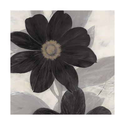 Midnight Bloom Prints by Ivo (Lipman)