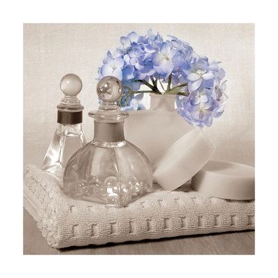 Hydrangea and Towel Prints by Julie Greenwood