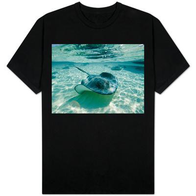 Southern Stingrays Swimming at Stingray City Shirts