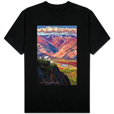 Denali National Park, Alaska - Polychrome Pass T-shirts