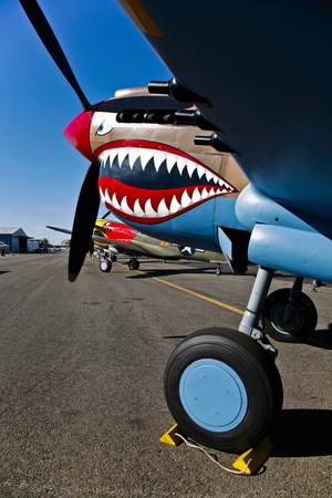 Nose Art on a Curtiss P-40E Warhawk Photographic Print