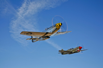 A P-51D Mustang Kimberly Kaye and a P-40E Warhawk in Flight Photographic Print