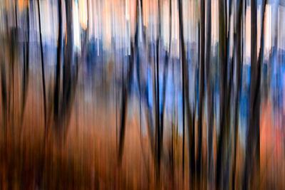 City Park Photographic Print by Ursula Abresch