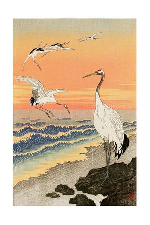 Cranes on Seashore Giclee Print by Koson Ohara