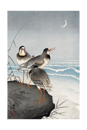 Three Plovers, Waves and Crescent Moon Giclee Print by Koson Ohara