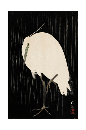 White Heron Standing in the Rain Giclee Print by Koson Ohara