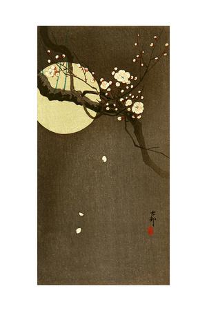 Flowering Plum and Moon Giclee Print by Koson Ohara