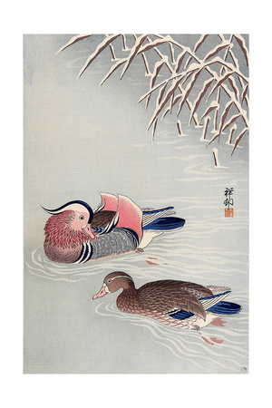 Mandarin Ducks in Snow Giclee Print by Koson Ohara