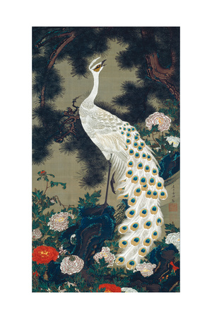 A Peacock, Pine and Peony Giclee Print by Jakuchu Ito