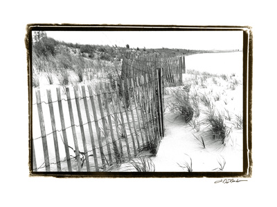 Beach Scape I Prints by Laura Denardo