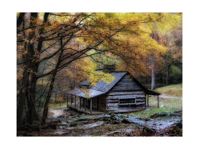 Damp Autumn Day Prints by Danny Head