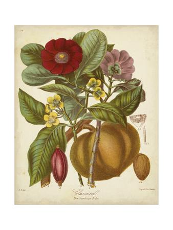 Twining Botanicals I Posters by Elizabeth Twining