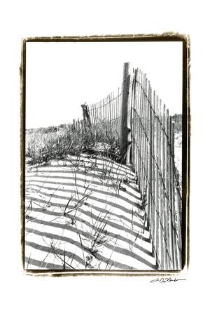 Beach Scape IV Posters by Laura Denardo