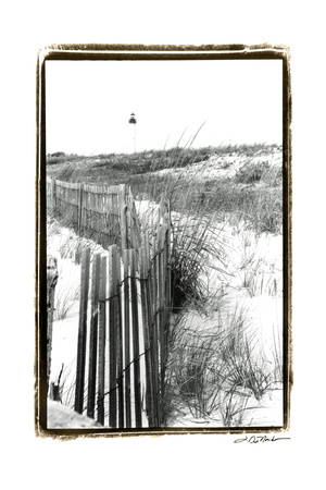 Cape May Lighthouse II Posters by Laura Denardo
