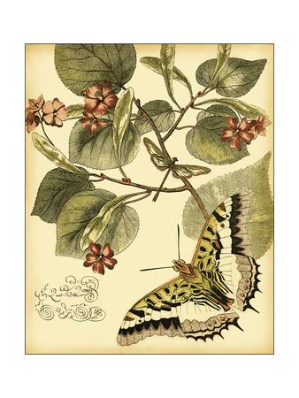 Mini Whimsical Butterflies I Art by  Vision Studio