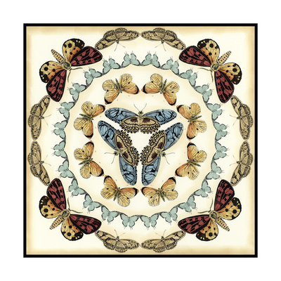 Butterfly Collector IV Print by Chariklia Zarris