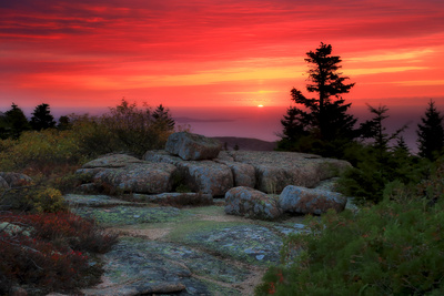 The Rising Sun over Atlantic Ocean and Boulders and Flora Atop Cadillac Mountain Fotografie-Druck von Robbie George