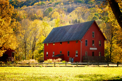 Red Barn and Autumn Foliage, Kent, Connecticut. Photographic Print by Sabine Jacobs