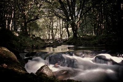 Golitha Falls Iii Photographic Print by Tim Kahane