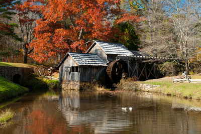 Ducks Swimming in a Pond at an Old Grist Mill in an Autumn Landscape Photographic Print by Darlyne A. Murawski