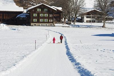 Winter Walking Trail, Klosters, Graubunden, Swiss Alps, Switzerland, Europe Photographic Print by Christian Kober