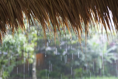 Heavy Monsoon Rain Dripping Off a Rice Straw Thatched Roof Photographic Print by Annie Owen