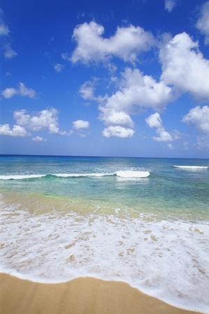 Paynes Bay, Barbados, Caribbean Photographic Print by Hans-Peter Merten